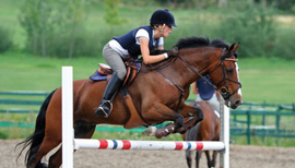 Jumping paard